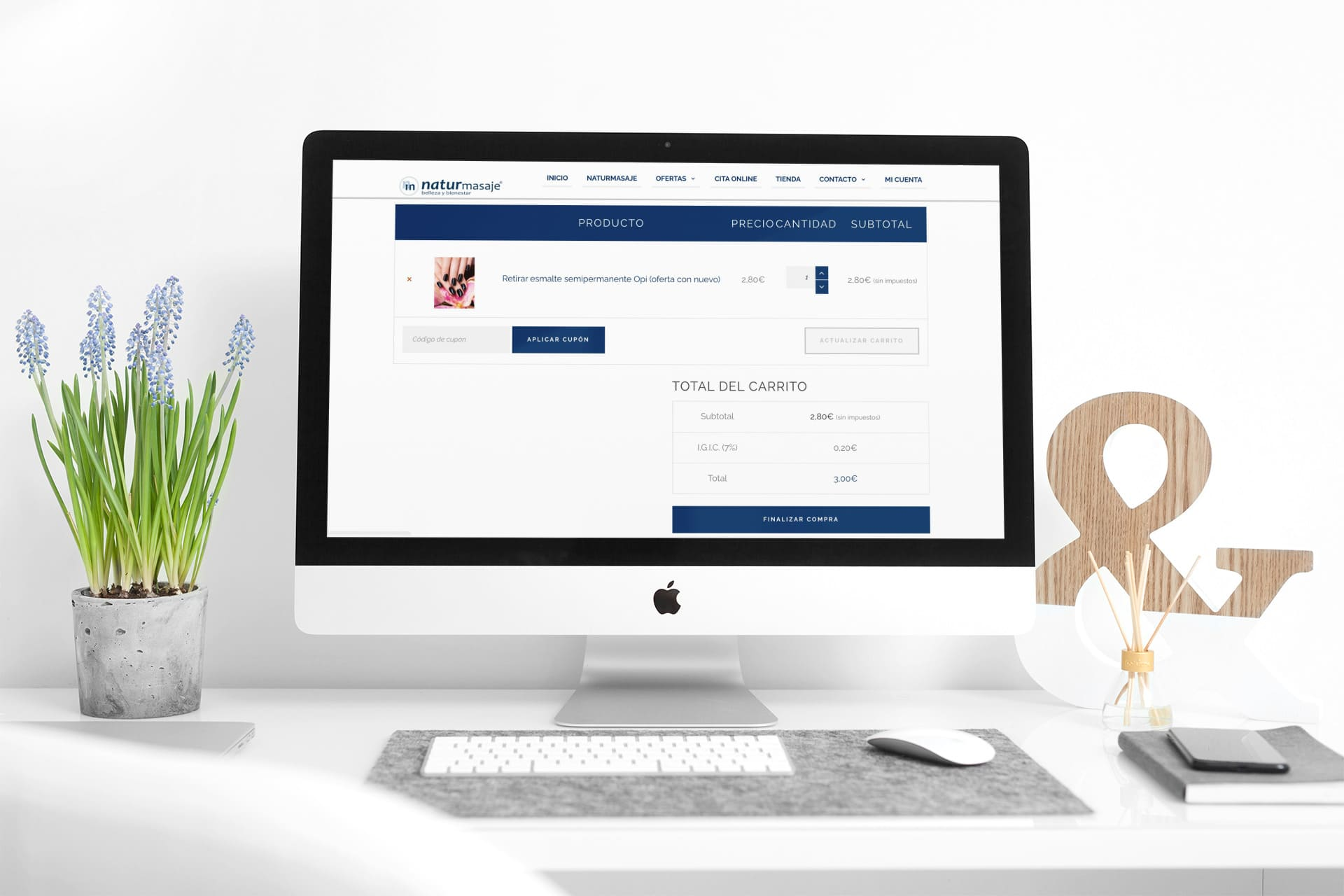 diseño tienda online naturmasaje carrito